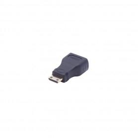 Mini-HDMI to HDMI Adapter