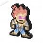 Pixel Pal - Street Fighter - Akuma